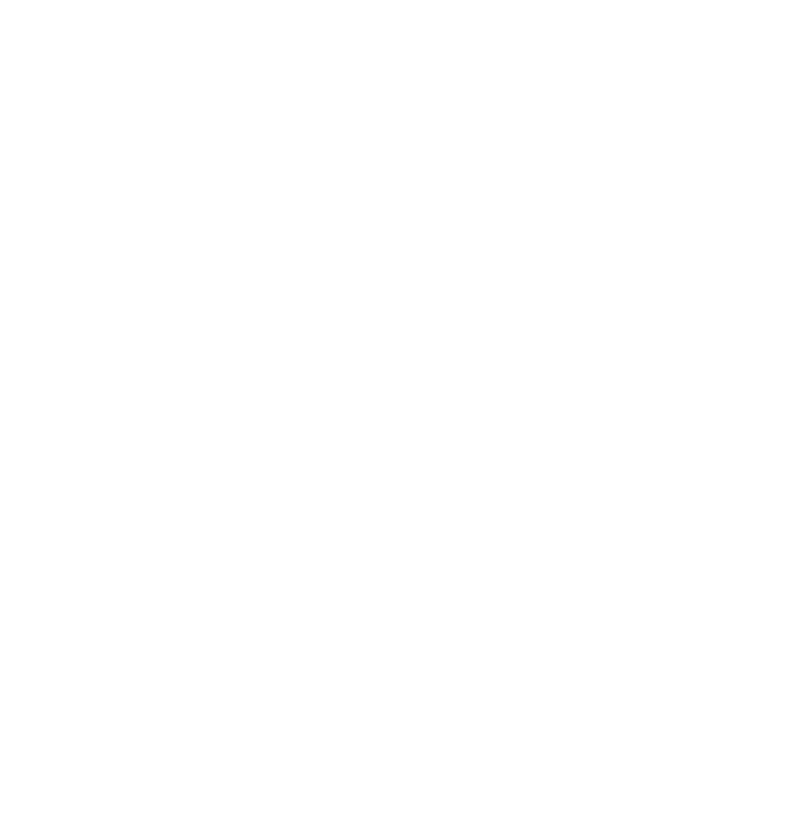 Braun Movies